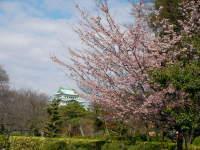 Nagoyajou33_1